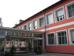 HS Viehofen